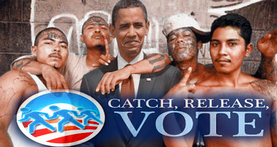 obama voter registration