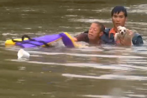 http://www.wafb.com/story/32753230/dramatic-video-shows-woman-dog-being-rescued-from-sinking-car Screengrab of Woman and her dog being rescued during baton rouge flooding in Louisiana 8/14/16 Source: WAFB