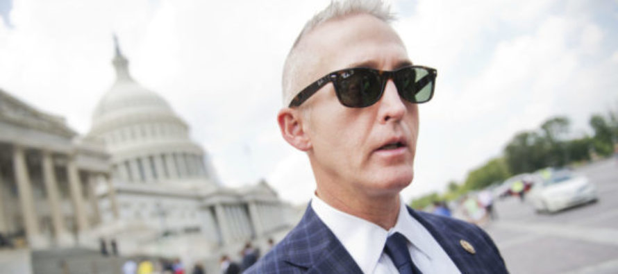 Trey Gowdy Teams Up with Trump