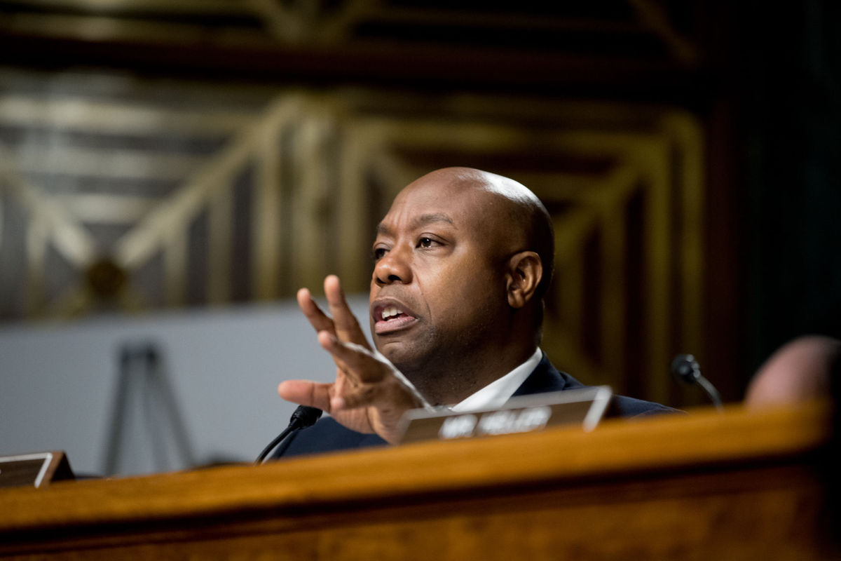Racist Democrat attacks Republican Senator Tim Scott's wiki page
