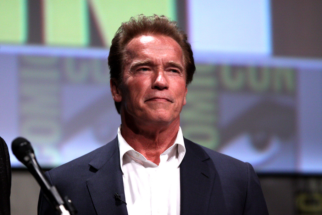 Arnold Schwarzenegger Weighs in On Immigration Debate