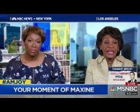 Auntie Maxine Starving After Mueller Nothing Burger Report: 'Trump Got into People's Heads'