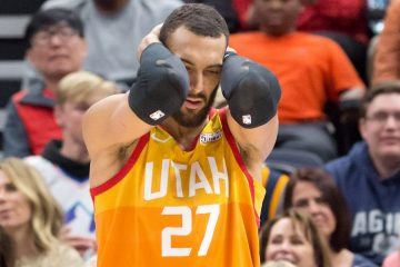 rudy gobert china