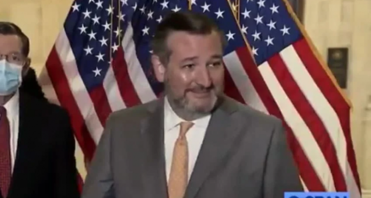 ted cruz mask