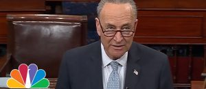 Chuck Schumer: Trump 'Made The Right Decision' - Hell Freezes Over - VIDEO