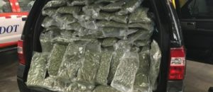Over 70 Pounds of Marijuana Discovered During Routine Indiana Traffic Stop